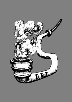 Semuta Semuta
