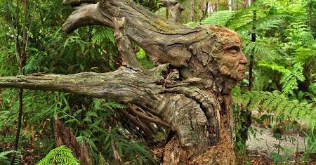 Wood_Sculptures_Ecaz